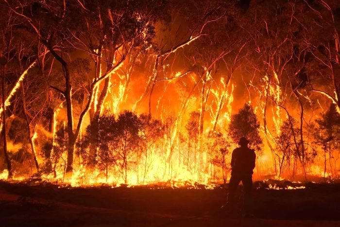 Bush Fires in Australlia